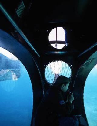 Aquascope - Port Cros, Bateau sous-marin