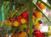 Buffet - Fruits - Evenement restaurant Port Cros la Trinquette